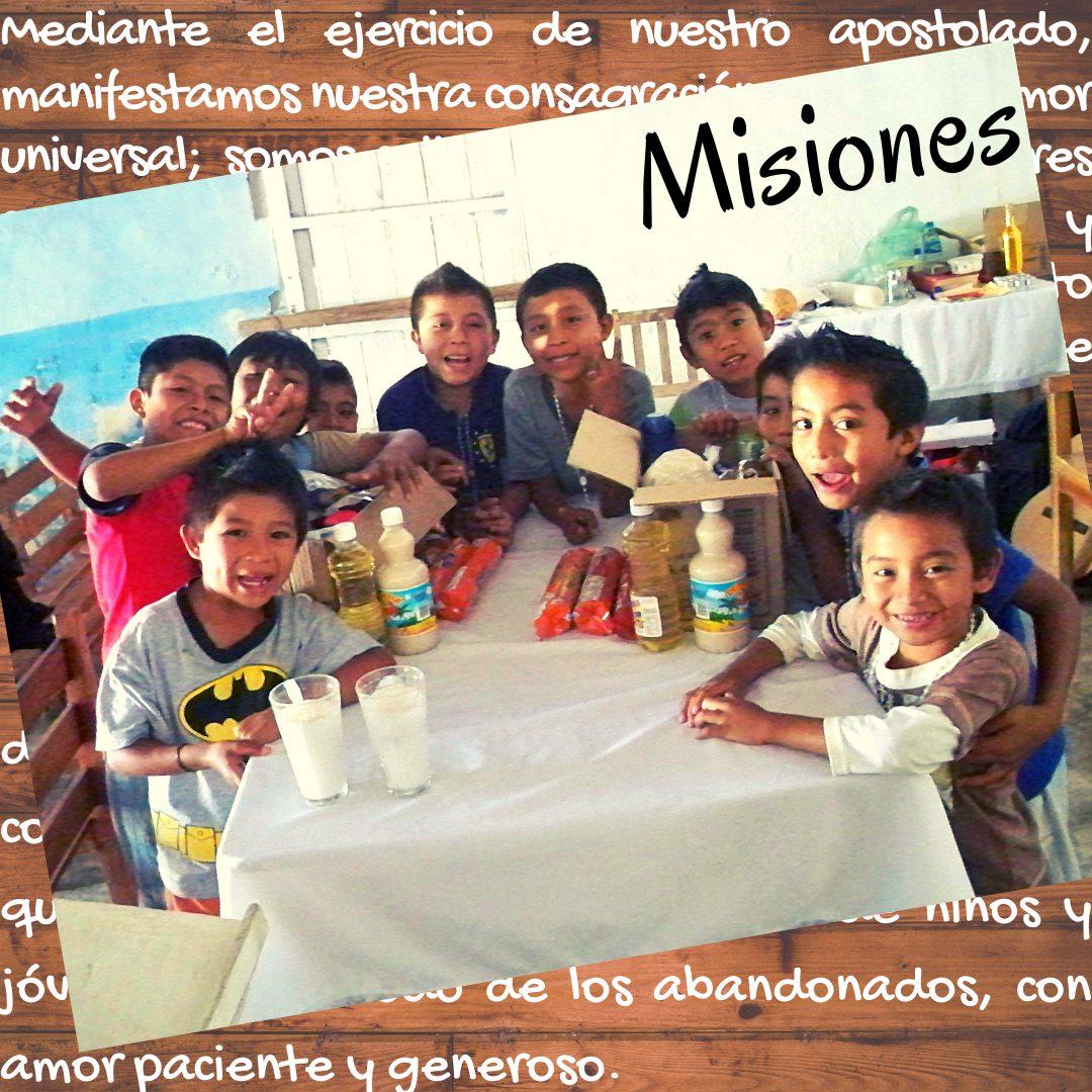 Misiones vocacional